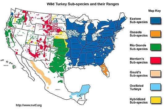 wild species range