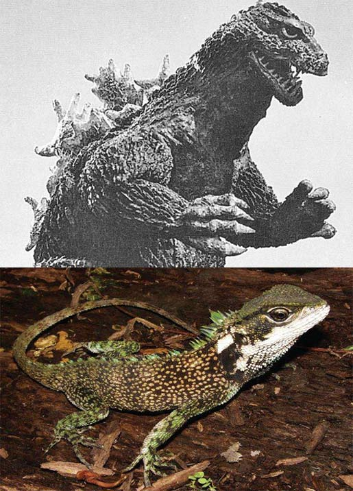 new species with old godzilla