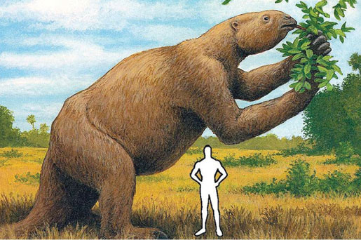 giant sloth size