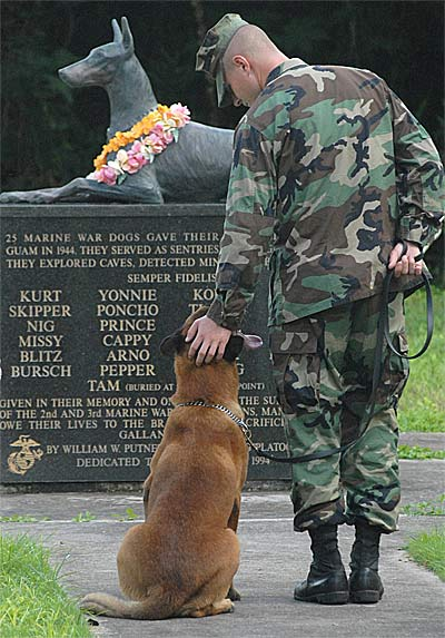 military dog cemetery