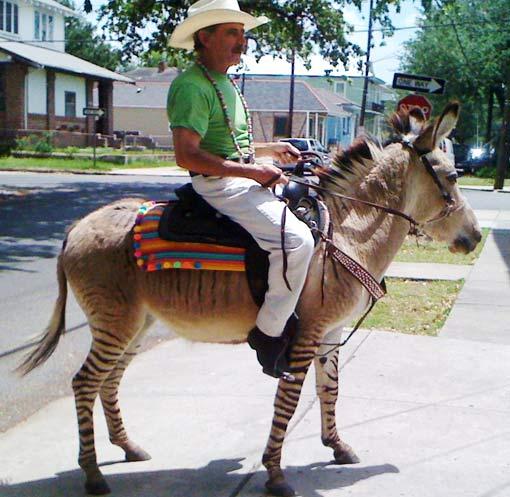 man riding