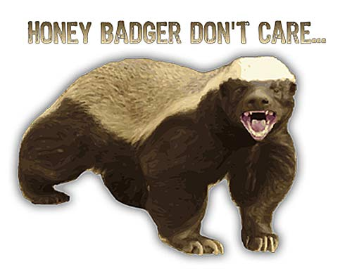 honey badger dont care