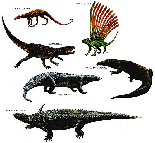 Image of: Scary Early Reptile Forms Factzoocom Ancient And Extinct Reptile Types The Dinosaurs Animal Pictures