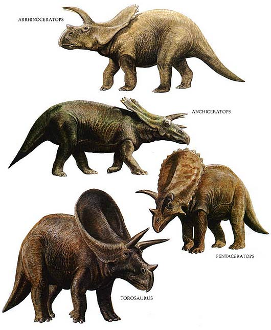 Image of: Prehistorical Icon Horned Types Factzoocom Ancient And Extinct Reptile Types The Dinosaurs Animal Pictures
