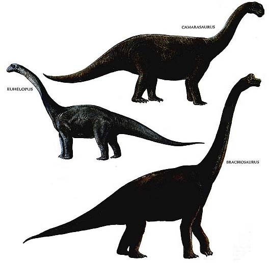 long necked dinos