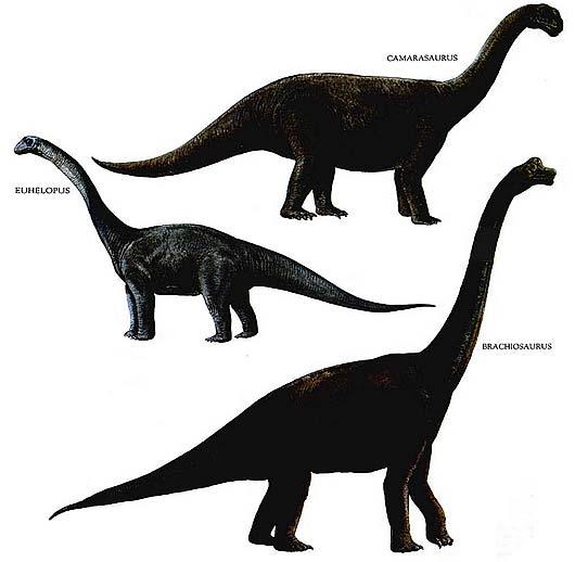 Dinosaur Poster Ark Survival